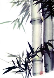 Bambus kleiner