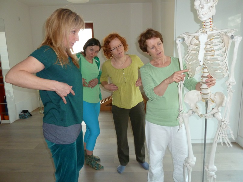 Erklärung einiger Akupressurpunkte am Skelett
